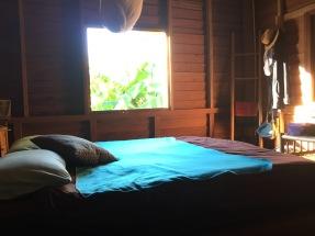 Chambre avec vue sur la nature